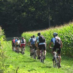 Fahrrad und E-Bike Touren Hennef (Sieg)